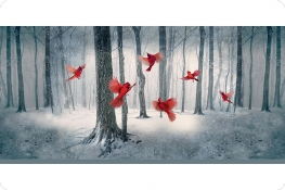 Hoffman Cardinal Digital Cuddle®Panel Winter