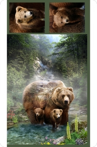 Hoffman Grizzly Digital Cuddle®Panel Brown